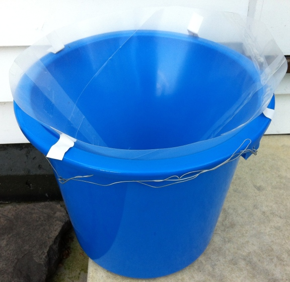 Moth trap - bucket with plastic cone inside.