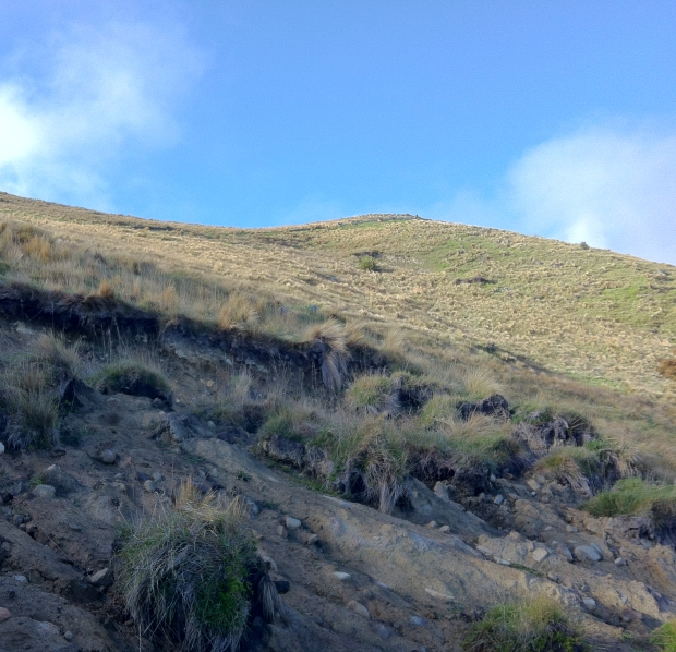 Eroding hill side