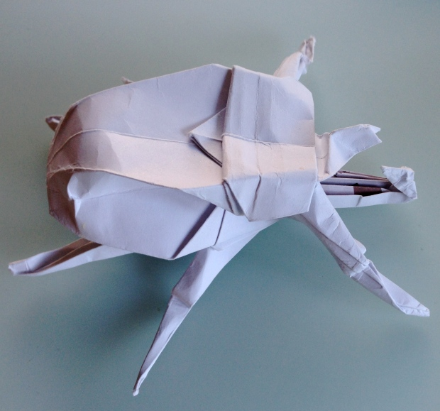 Beetle - Jo Nakashima