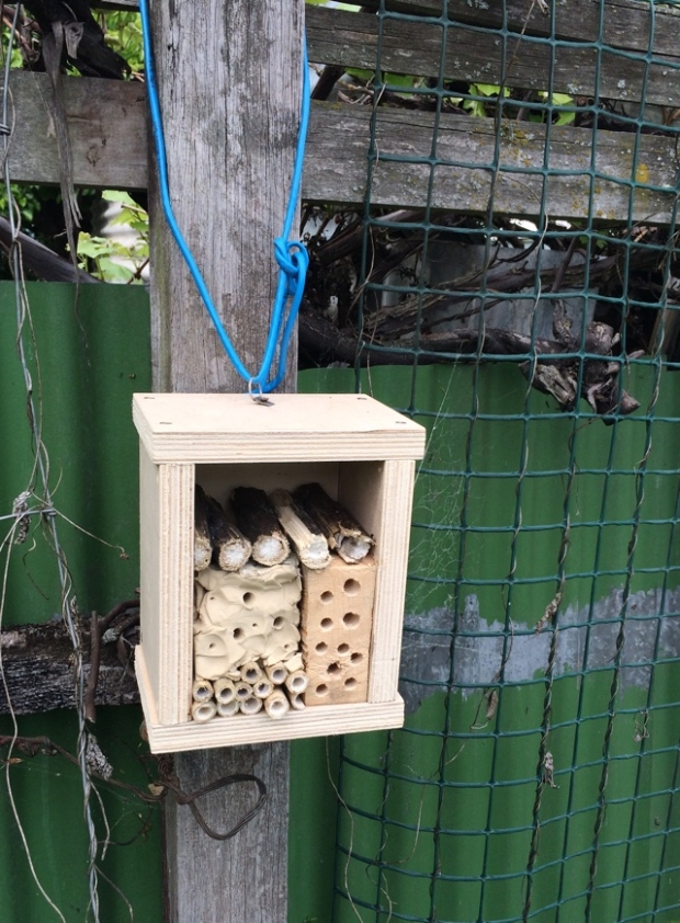 zeplora-insect-hotel-img_2115